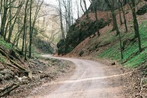 farm-track-351475_1280